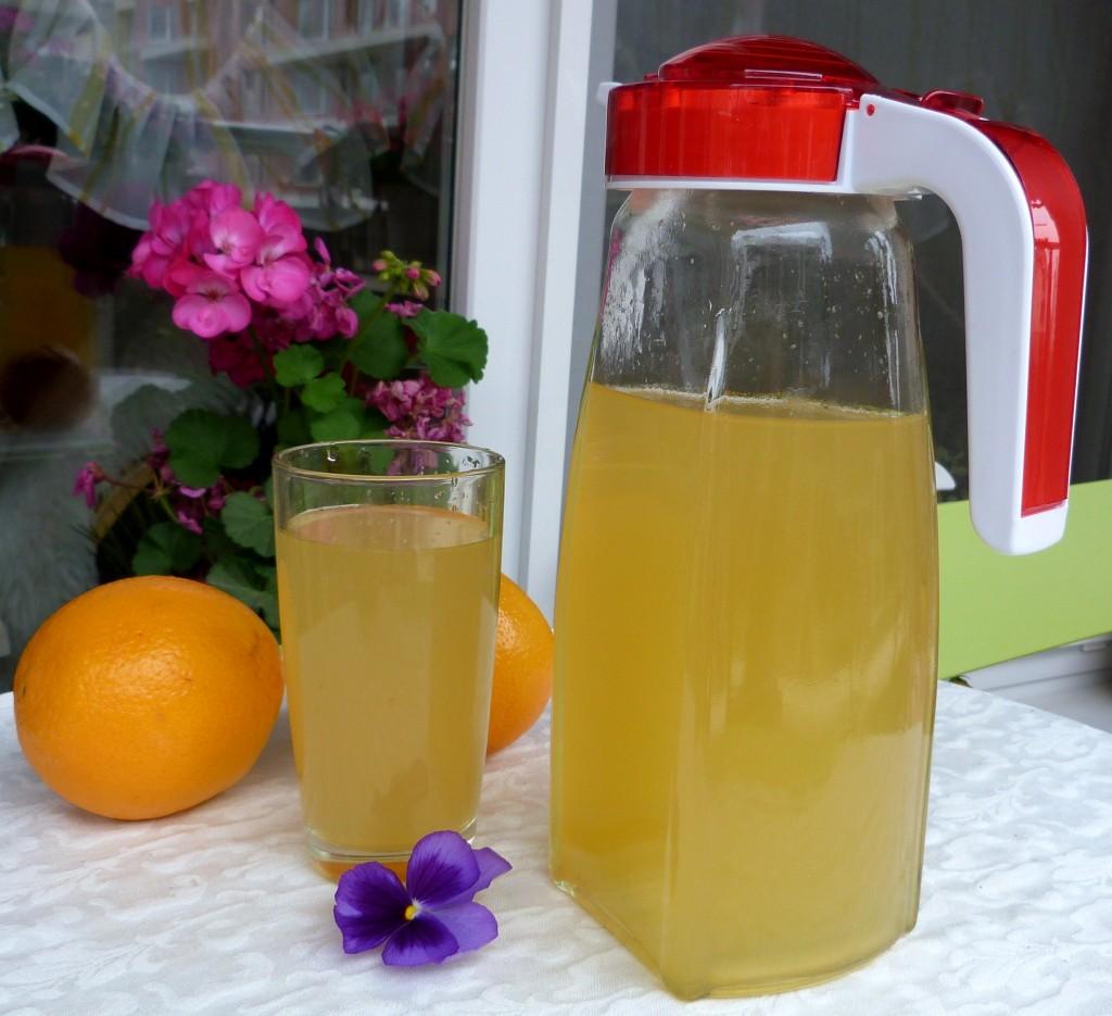 studen chai ot byz, limon i menta