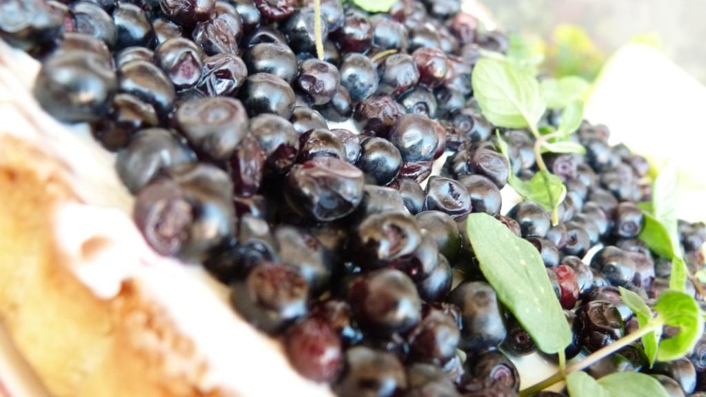 borovinkov tart
